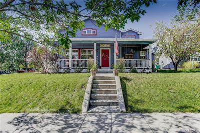 Bromley Park Single Family Home Under Contract: 295 Longspur Drive