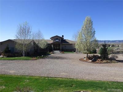 Littleton CO Single Family Home Active: $1,695,000