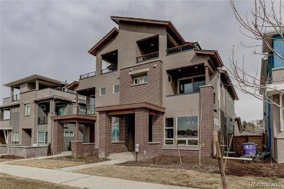 Denver Condo/Townhouse Active: 4565 West 50th Avenue #8B