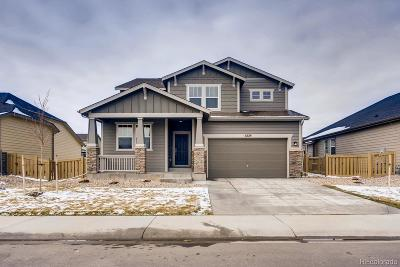 Timnath Single Family Home Active: 5229 Odessa Lake Street