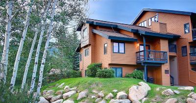 Steamboat Springs CO Condo/Townhouse Active: $249,000