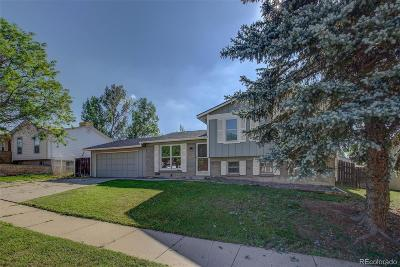Single Family Home Active: 4368 South Youngfield Street