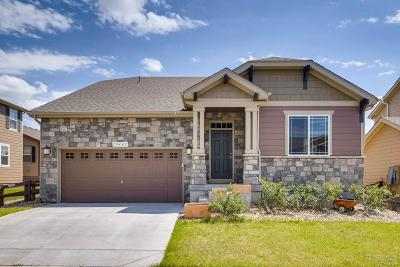Parker CO Single Family Home Active: $515,000