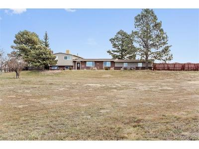 Castle Rock Single Family Home Active: 24 South Ridge Road