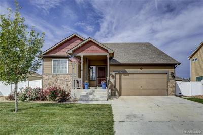 Wellington Single Family Home Active: 6837 McClellan Road