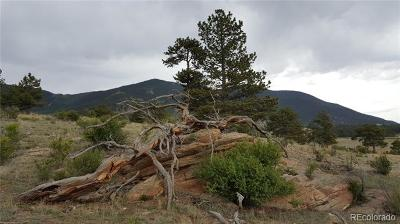 Lake George CO Residential Lots & Land Active: $164,000