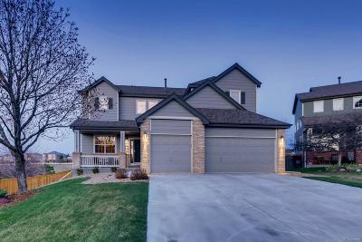 Littleton Single Family Home Under Contract: 6947 Lionshead Parkway