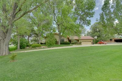 Golden, Lakewood, Arvada, Evergreen, Morrison Single Family Home Under Contract: 7850 West 5th Avenue