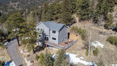 Conifer, Evergreen Single Family Home Active: 125 Meadow Lane