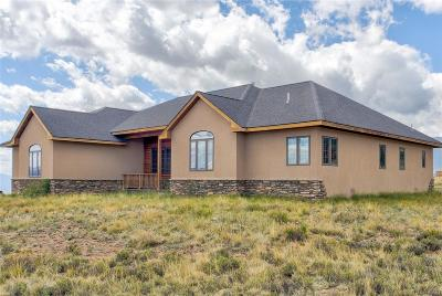 Buena Vista Single Family Home Active: 30966 Fourteener Circle
