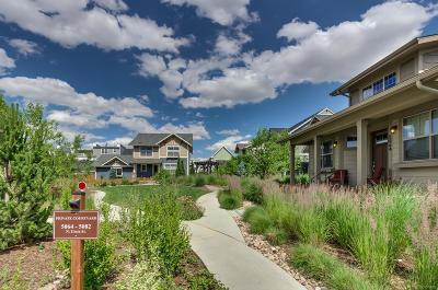 Denver Single Family Home Active: 5070 Uinta Street