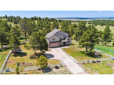 Elbert County Single Family Home Under Contract: 32225 Ridge Road