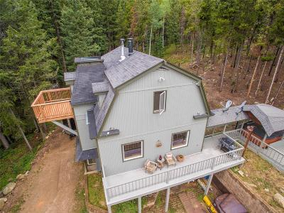 Conifer Single Family Home Under Contract: 32231 Steven Way