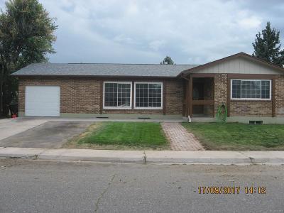 Denver CO Single Family Home Active: $314,900