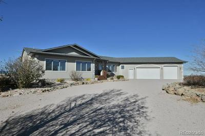 Castle Rock Single Family Home Active: 3120 Canon Ridge Road