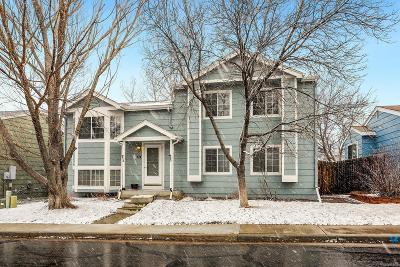 Douglas County Single Family Home Active: 174 North Bedford Avenue