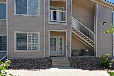 Highlands Ranch Condo/Townhouse Under Contract: 3857 Mossy Rock Drive #101