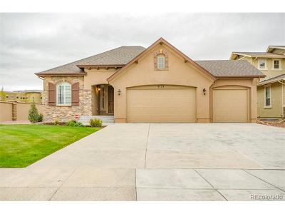 Colorado Springs Single Family Home Active: 9104 Argentine Pass Trail