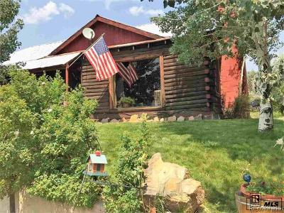 Steamboat Springs Single Family Home Active: 1301 Conestoga Circle