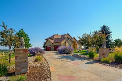 Parker CO Single Family Home Active: $950,000