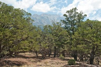 Saguache County Residential Lots & Land Under Contract