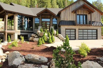Steamboat Springs Single Family Home Active: 1016 Steamboat Boulevard