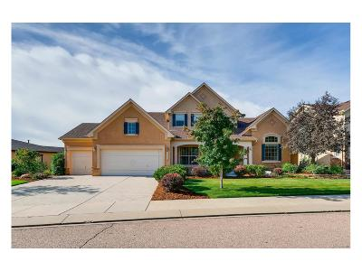 Flying Horse Single Family Home Active: 2363` Rusty Ridge Court