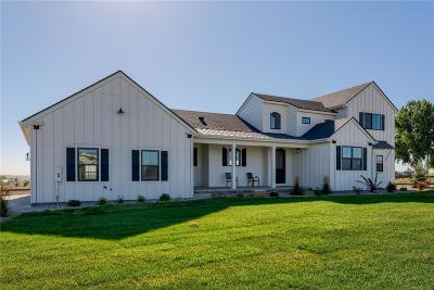 Windsor Single Family Home Under Contract: 817 Shade Tree Drive