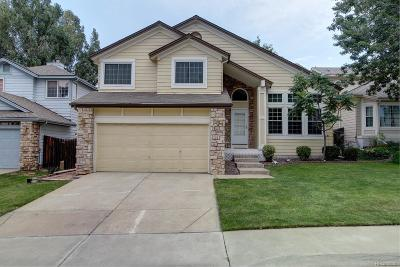 Centennial Single Family Home Under Contract: 5444 South Danube Way