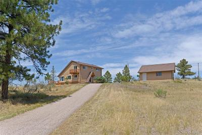 Parker CO Single Family Home Active: $579,000