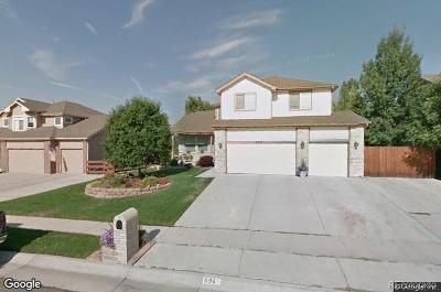 Arvada Single Family Home Active: 6961 Iris Court