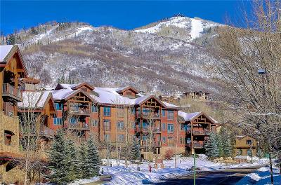 Steamboat Springs Condo/Townhouse Active: 1800 Medicine Springs Drive #5306