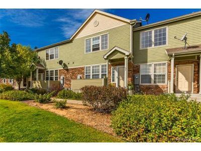 Thornton Single Family Home Active: 12728 Jasmine Street #D
