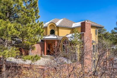 Castle Rock Single Family Home Under Contract: 514 Prospect Drive