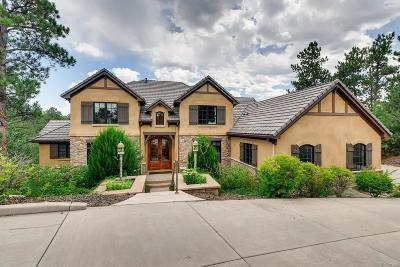 Castle Rock Single Family Home Active: 648 Ruby Trust Drive