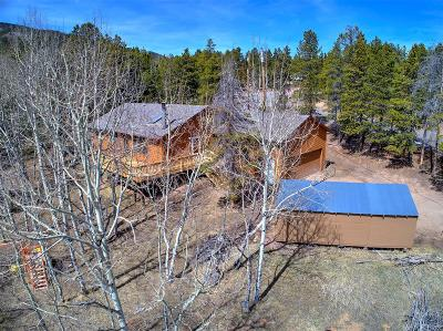 Conifer Single Family Home Under Contract: 31896 Griffin Drive
