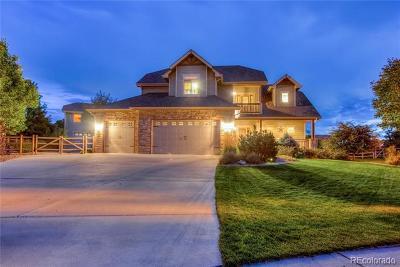 Single Family Home Active: 837 Vista Grande Circle