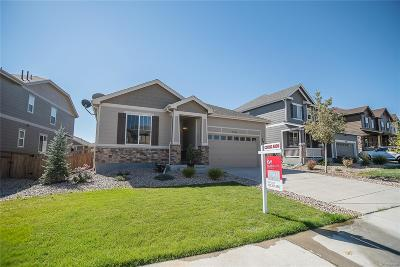 Castle Rock Single Family Home Active: 7762 Blue Water Lane