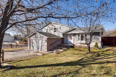 Colorado Springs Single Family Home Active: 4910 Wood Brook Court