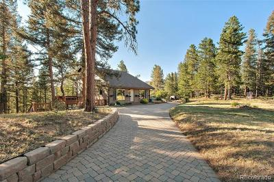 Conifer Single Family Home Under Contract: 24867 Red Cloud Drive