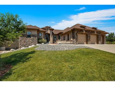 Parker Single Family Home Under Contract: 20028 East Crooked Pine Circle