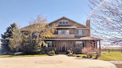 Boulder Single Family Home Active: 7566 Skyway Court