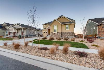 Arvada Single Family Home Active: 19981 West 95th Place
