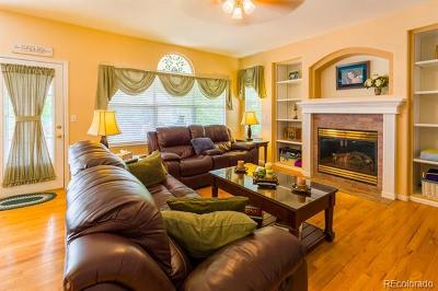 Single Family Home Active: 5725 South Truckee Court