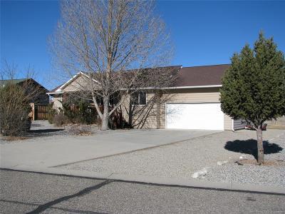 Buena Vista Single Family Home Under Contract: 146 Windwalker Road