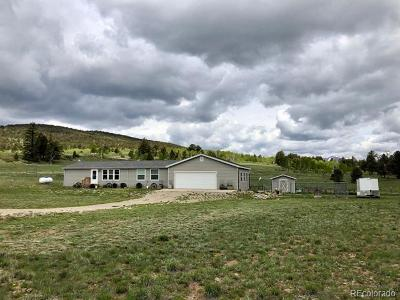 Park County Single Family Home Active: 1326 Kaufman Road
