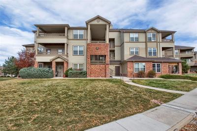 Parker Condo/Townhouse Under Contract: 12766 Ironstone Way #302