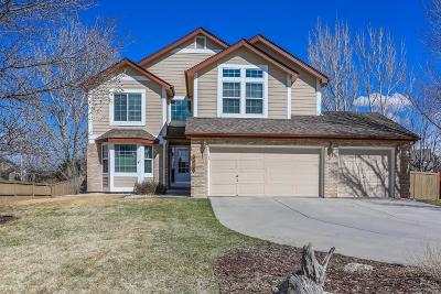 Meadows, The Meadows Single Family Home Under Contract: 4468 Buena Vista Court