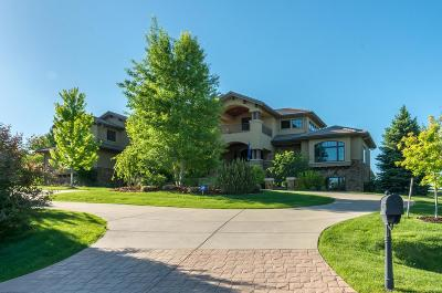 Niwot Single Family Home Active: 6470 Cherry Court
