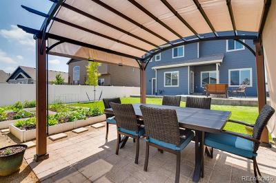 Windsor Single Family Home Active: 5755 Clarence Drive